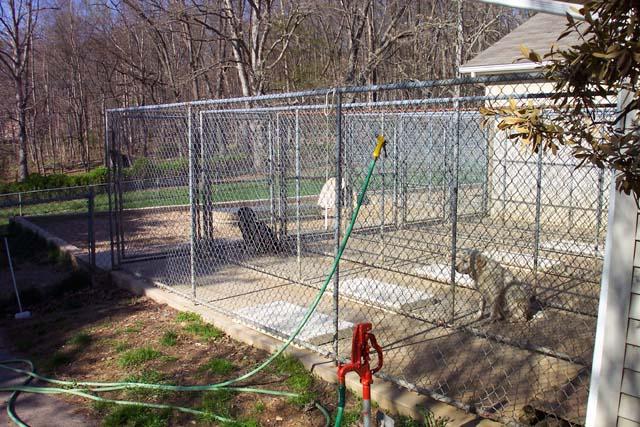Allegheny Labrabors - Dog Runs